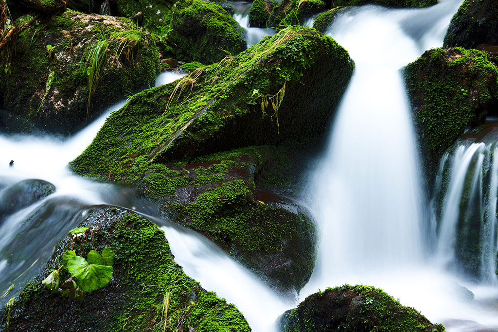 ?image=Nature/creek-21749.jpg